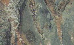abrolhos-3657