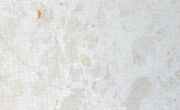 french-vanila-1551