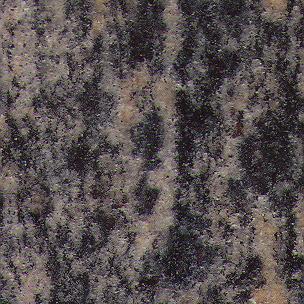 persian-blue-3329