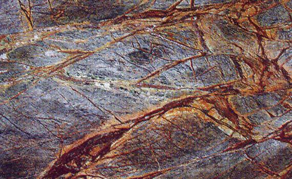 Rainforest Brown Granite : Granite color