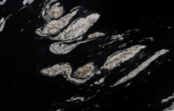 copacabana orca