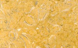 giallo p